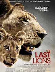 最后的狮王