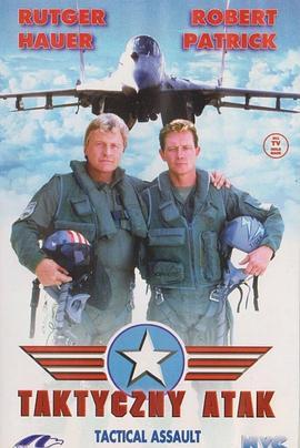 F16空中战将