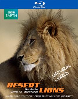 行星地球特别版:沙漠狮